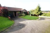 Bungalow for sale in Oakham Close...