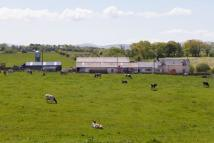 property for sale in Little Auchengibbert Farm, Logan, By Cumnock, East Ayrshire, KA18