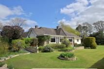 3 bed Detached Bungalow in West Chiltington