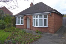 Detached Bungalow in 3 Eastfield Road...