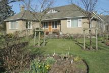 Detached Bungalow for sale in Two Ways Swainsea Lane...