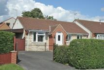 Detached Bungalow for sale in 20 Ruffa Lane, Pickering...