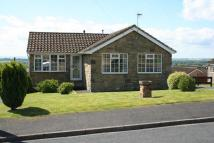 3 bedroom Detached Bungalow for sale in 7 Poplar Avenue...