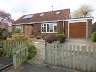 Detached Bungalow to rent in Acres View, Ashdale Road...
