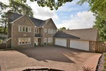 The Beeches Detached house for sale