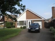 Newbold Terrace East Detached Bungalow to rent
