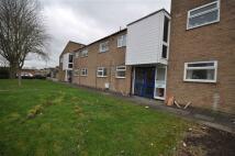 1 bedroom Flat in Padmore Court...