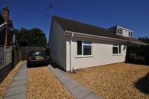 Semi-Detached Bungalow to rent in Kimberley Road, Baginton...