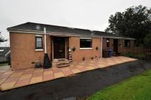 semi detached home for sale in Glen Douglas Road...