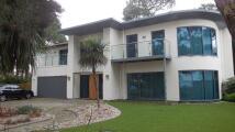 Crichel Mount Road new property to rent