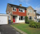 property to rent in Marchants Close, Hurstpierpoint