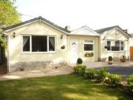 Detached Bungalow to rent in Ringwood Road, Ferndown...