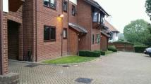 1 bed Apartment to rent in Eversley Park Road...
