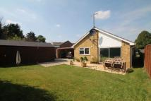 Detached Bungalow in Woodland Road, Sawston...