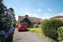 3 bed Semi-Detached Bungalow for sale in Paddock Way, Sawston...
