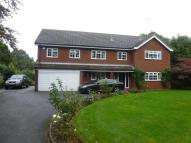 5 bedroom Detached house in Stone Lodge Lane, IPSWICH