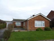 Bungalow to rent in Taverham Road, Taverham...