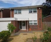 Detached property for sale in Oakwood Avenue Beckenham...