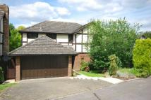Holmbury Detached property to rent