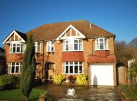 4 bed semi detached house for sale in Brabourne Rise Beckenham...