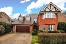 5 bedroom Detached property to rent in Bucknall Way BR3