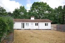 Bungalow to rent in Upper Elmers End Road...