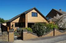 Detached property for sale in 21 Fane Close, Stamford