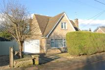 3 bedroom Detached home for sale in St Luc, Little Casterton...