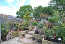 semi detached house for sale in Downderry Road Downham...