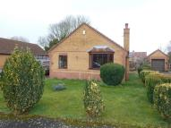 Detached Bungalow to rent in Hagbech Hall Close...