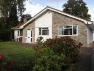 Bungalow to rent in Pringles Close, Ferndown