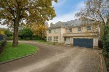 6 bedroom Detached house for sale in Hill Brow BR1