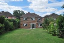 Detached property for sale in South Hill Road Bromley...