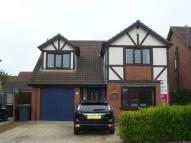 Northumbria Road house to rent