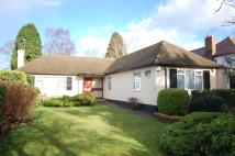 Bungalow in Berens Way Chislehurst...