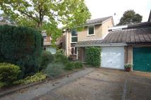 3 bed Link Detached House in Onslow Crescent...