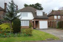 4 bedroom Detached property to rent in Ravenshill Chislehurst...