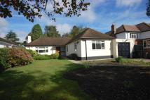 3 bed Bungalow in Berens Way Chislehurst...
