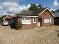 Bungalow to rent in Swaffham Road, Watton...