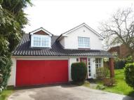 Detached property to rent in Park Road, Bawtry...