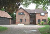 4 bed house to rent in Forest Rise...