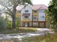 property to rent in Bluebell Road, Park Farm...