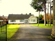 Bungalow in Offerton Road...