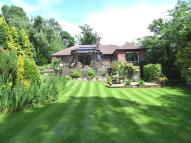 Bungalow to rent in Legh Road, Disley