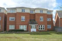 Flat in Robin Road, Oakley Vale...