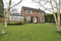 4 bedroom property to rent in Plane Tree Gardens, LEEDS