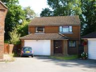 Detached house to rent in Lashmere, Copthorne...