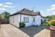 Detached Bungalow to rent in Dunnings Road...