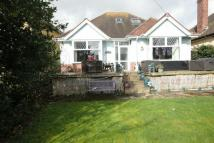 SIDMOUTH Detached Bungalow for sale