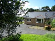 Semi-Detached Bungalow for sale in Cwrt Y Brenin, Ffosyffin...